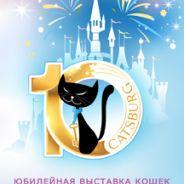 Юбилейная выставка кошек «Кэтсбург 2020»