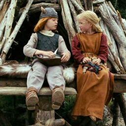 Вики — маленький викинг