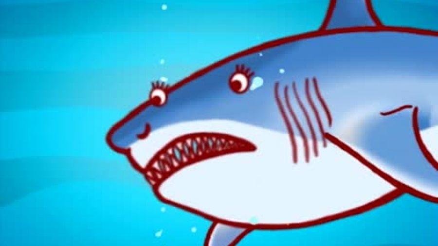 Выпуск 215 «Разновидности акул». Видео 1