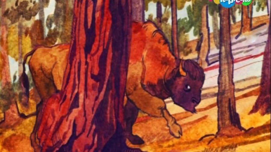 Тайны сказок. Сказка индейцев Дакота. Нэпи и Нип