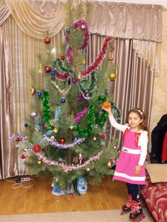 София Николаевна Детистова