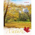 Апплика Дневник школьный для младших классов Золотая осень С3621-08