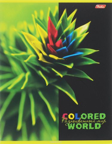 Hatber Тетрадь Разноцветный мир 96 листов в клетку 14558