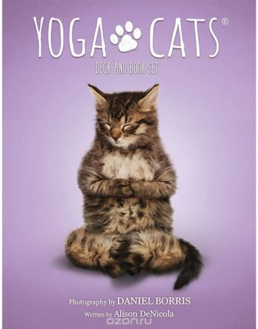 Карты Таро U.S. Games Systems Yoga Cats Challenges cards